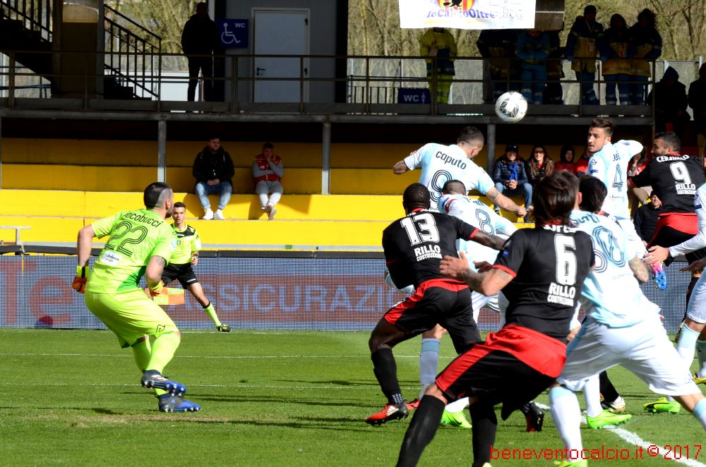 bn entella 196