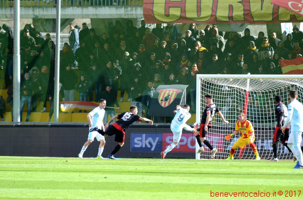 bn entella 203